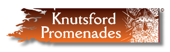 Knutsford Promenades, the build-up on Storify
