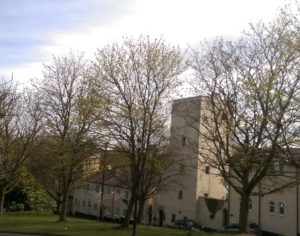 Trees and amazing buildings of Drury Lane - just one Knutsford treasure